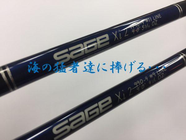 Sage_Xi2